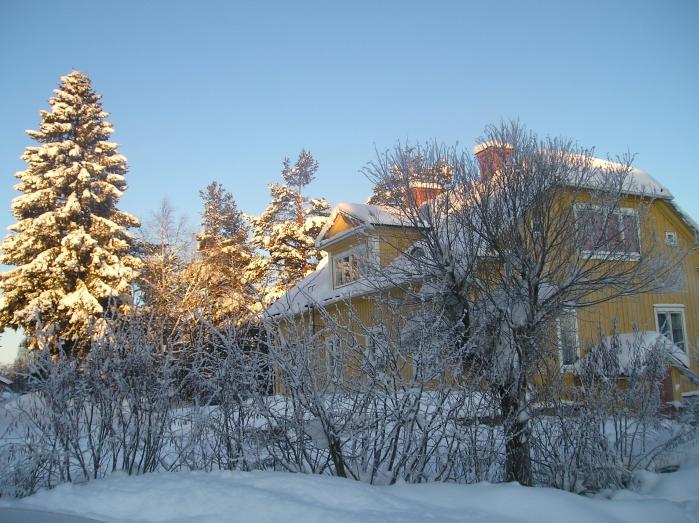 Hamra_Winter_Look